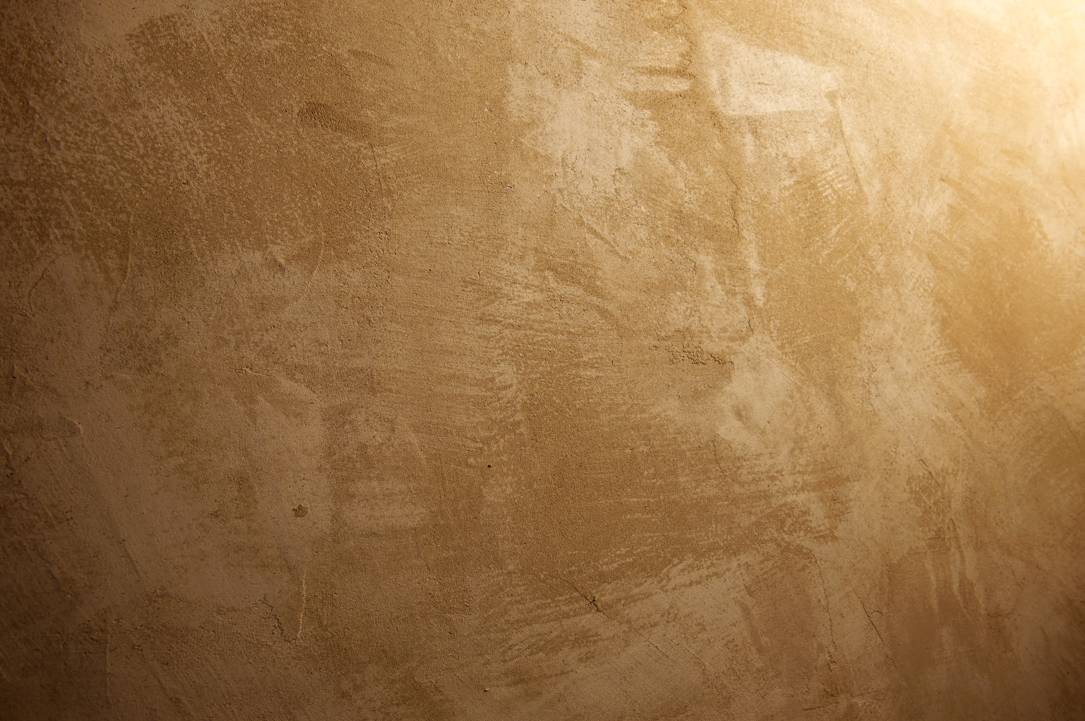 Gallery adam - Vernice per muro interno ...